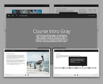 Lectora template set - Oceanside Gray