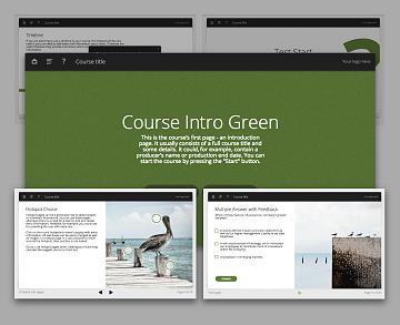 Lectora template set - Oceanside Green