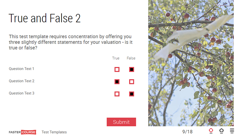 true or false test template