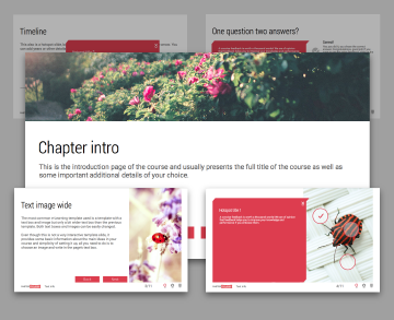 Info page templates Minimal